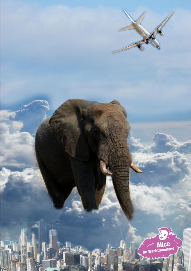 In der Gruppenarbeit gibt es eine Fülle von Interpretationen, und jede Projektion ist für sich richtig, so wie bei dieser Parabel mit dem Elefant und den blinden Männern.